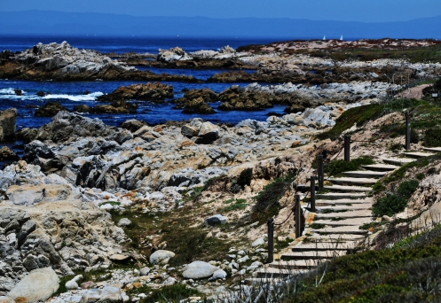 Step Down to Asilomar State Beach