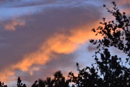 Big Sur Sunset from Plaskett